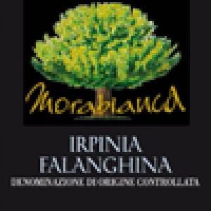 Morabianca Falanghina 2012 Mastroberardino conf. 6 bottiglie lt.