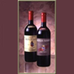 Rosso di Montalcino 2008 Biondi Santi lt.0,75